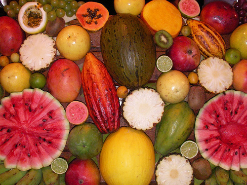 The variety of fruit in Peru is amazaing. We serve it up fresh every morning.